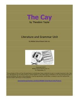How to write a Literary Essay Introduction and Thesis